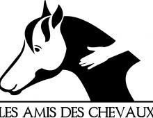 Un logo orphelin