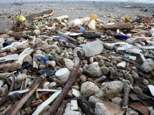 Détail sur une plage pleine de détritus