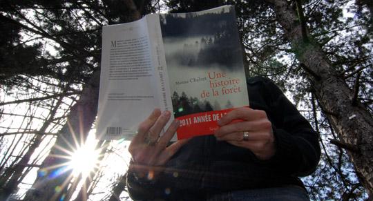 ExtraPaul lit une histoire, dans la forêt...