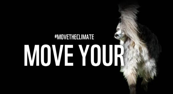 La campagne du WWF, avec mon chien